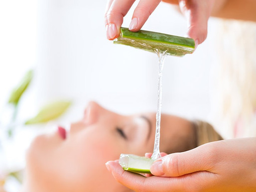 Aloe Vera is Nature's Number One Remedy: Plants & Skin Care Series