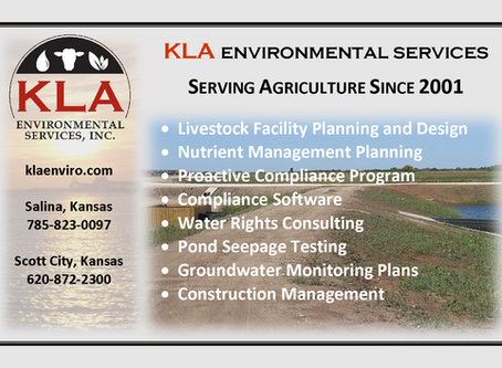 Our recent advertisement