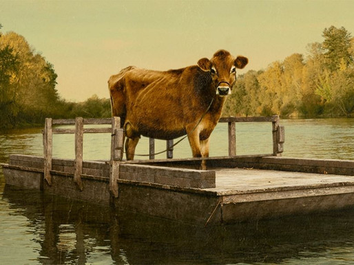 First Cow film review