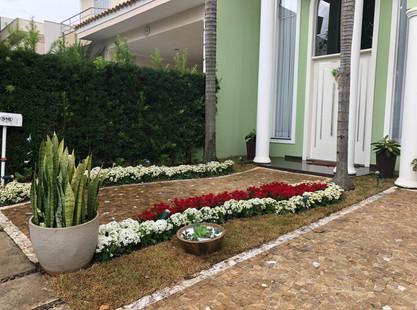 Como levamos satisfação para a cliente através da revitalização de seu jardim