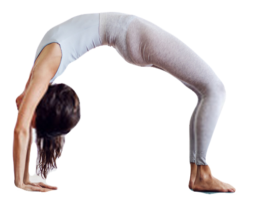 Upward Bow (Wheel) Pose
