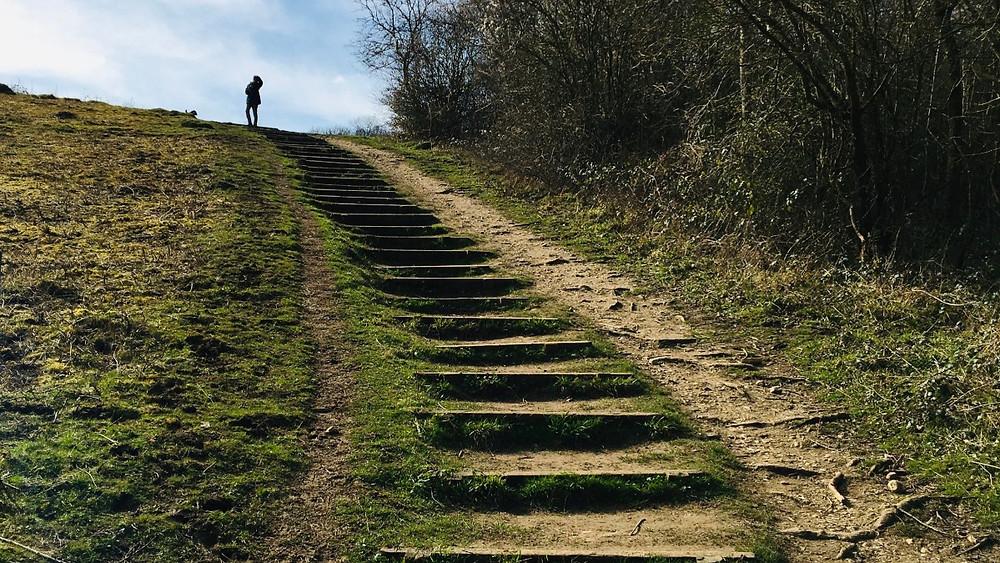 Path to Menopause