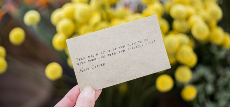 Hand holding card with typed text and flowers in the background