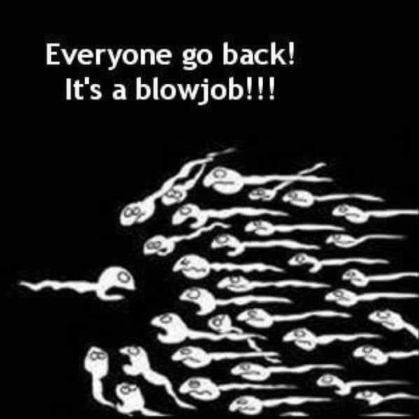 Funny Blowjob Memes