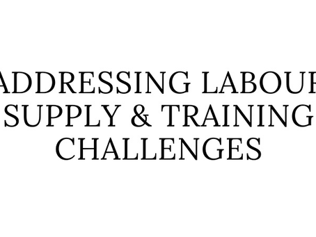 Addressing Labour Supply and Training Challenges