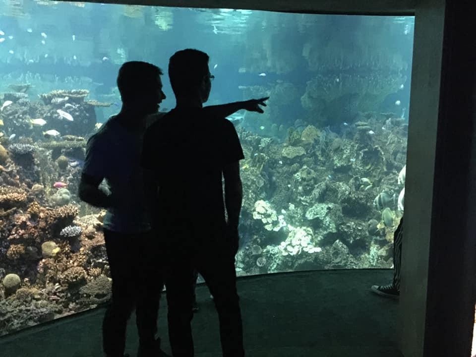homeschool field trip to the baltimore aquarium