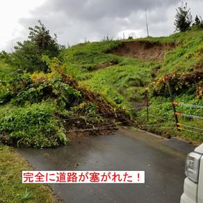 選挙に台風に(*_*)