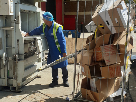 Does baling your cardboard really save you money?