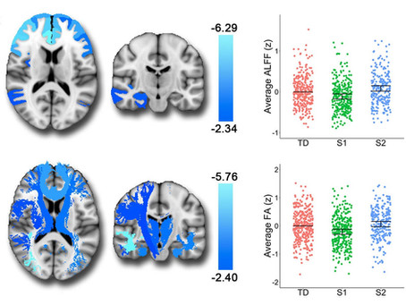 Neurostructural Heterogeneity in Mood and Anxiety Disorders