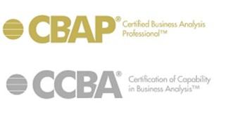 Вопросы. Экзамен CBAP/CCBA. Пример 5