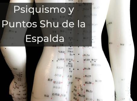 UN CASO SOBRE LOS PUNTOS SHU DE LA ESPALDA Y LOS 5 ASPECTOS PSIQUICOS