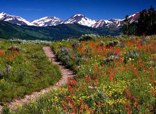 Riding the Rockies' Mountain Splendor