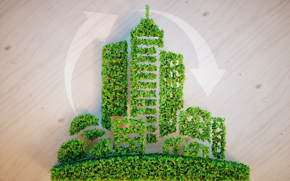sustainability-in-consultancy