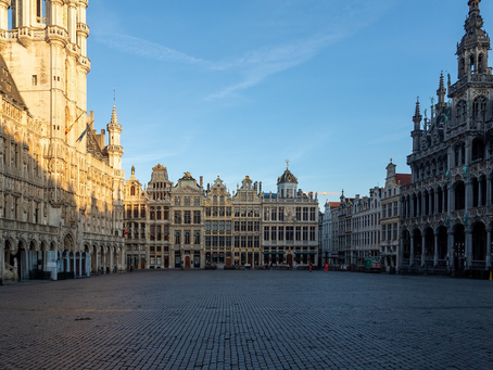 Belgian Political Update - Friday 17 April 2020