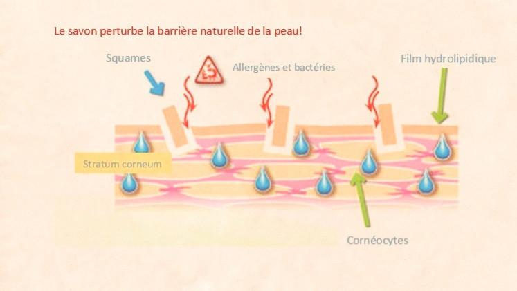 le savon pas bon pour la peau et savon rend la peau seche et sensible