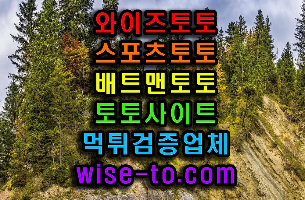 와이즈토토사진