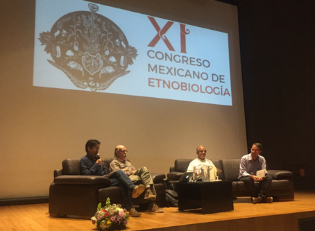 Mexican Congress of Ethnobiology in Morelia, Mexico, 2018.