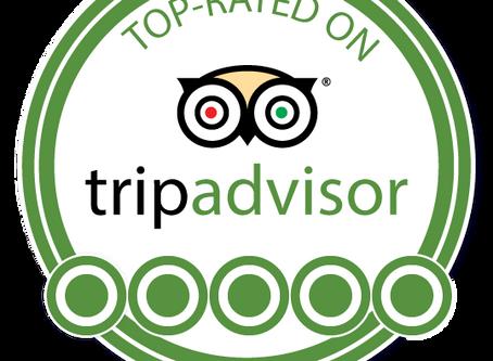 Trip Advisor REVIEWS?