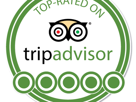 Trip Advisor REVIEWS?
