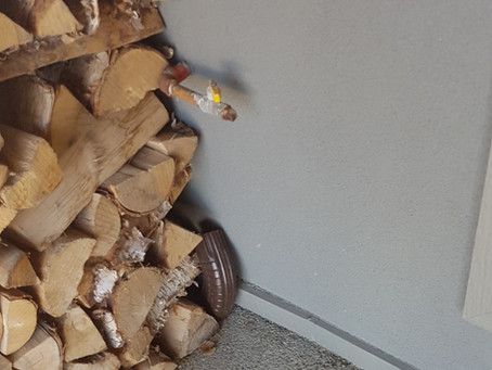 Should I store firewood against the house to keep it dry?