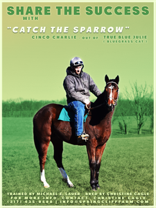 Catch The Sparrow, Michael E Lauer, Springcliff Farm, Indiana Horse Racomg