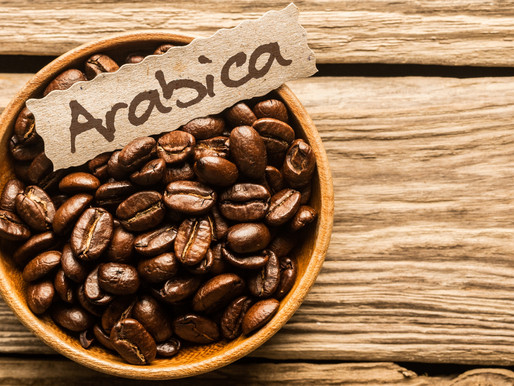 The Lowdown : Coffee Arabica