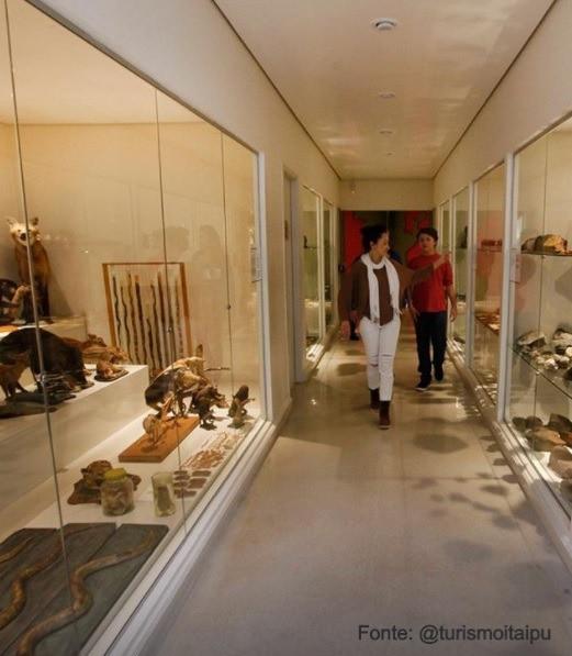 Artefatos arqueológicos da história de Foz do Iguaçu no EcoMuseu de Itaipú