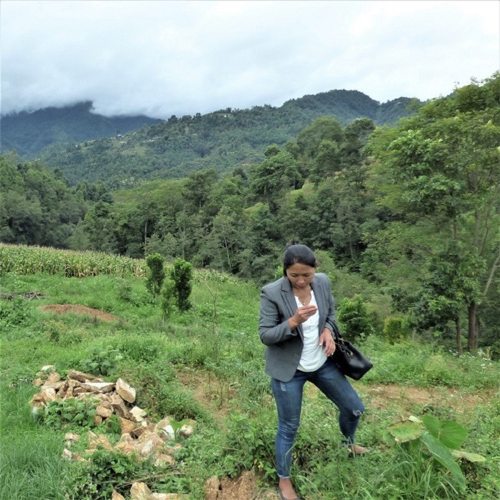 A woman standing looking at herbs with mountains behind.