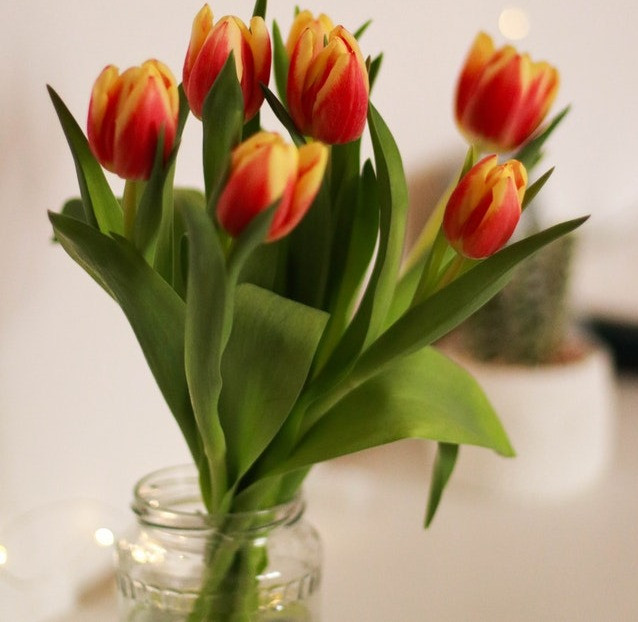 use sugar with water for flower's food