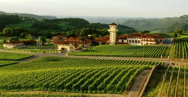 Winery Valley - Bento Gonçalves - Rio Grande do Sul