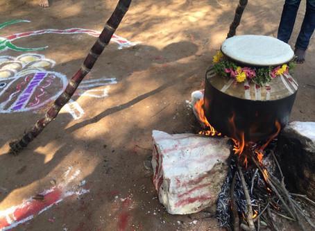 Dayspring Pongal Celebrations