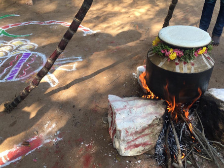Dayspring Pongal Celebrations