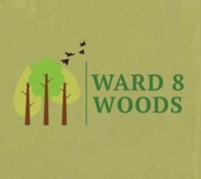 """Loving the Earth"" Spotlight: Ward 8 Woods Conservancy"