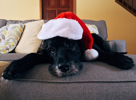 5 Tips on Celebrating the Holidays When You Don't Feel Up To It!