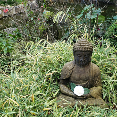 Common Misconceptions of Mindfulness