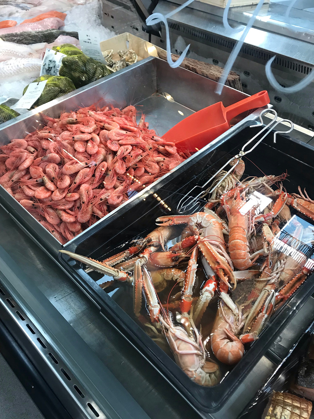 Fresh Mussels, Shrimps and Langoustines in the Fish Monger's Counter!