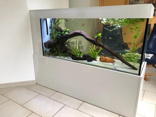 Raumtrenner Aquarium
