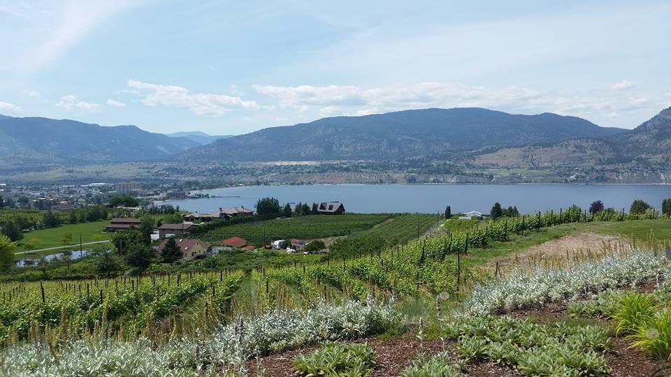 Poplar Grove Winery, Penticton BC, Canada