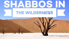 Shabbos in the Wilderness
