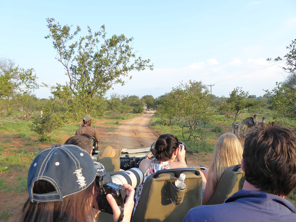AFRICAN ADVENTURE, SAFARI ADVENTURE, GROUP TRIPS TO AFRICA