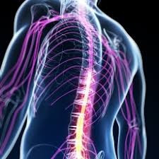 COVID-19; Neuromuscular disease patients at higher risk...