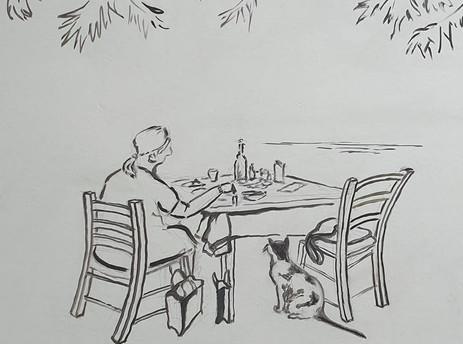 Μην ταΐζετε τις γάτες