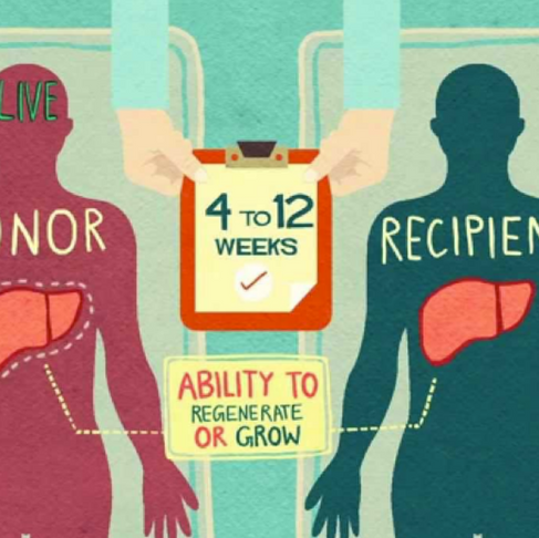 Become an Organ Donor and Save Up to 8 Lives