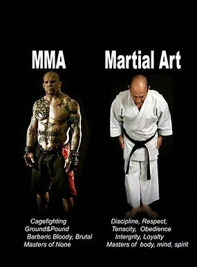 How MMA varies from traditional martial arts