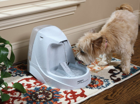 PetSafe's Drinkwell Platinum Pet Fountain provides your pet with Clean and Fresh Water