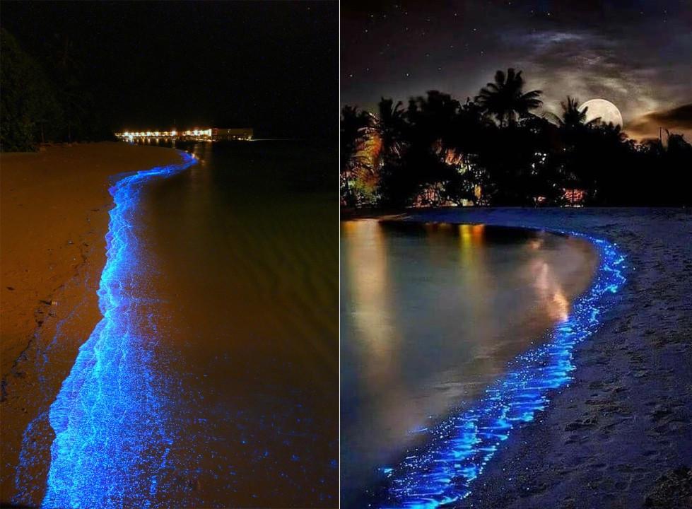 Vaadoo mer d'étoiles Maldives