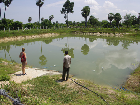 To compensate for changes in rainfall patterns in a Cambodian agricultural territory