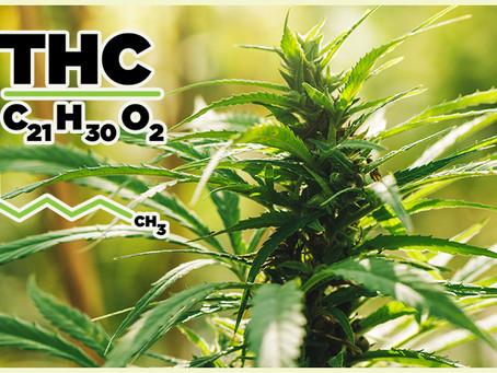 El CBD es genial, pero los beneficios a la salud del THC también.