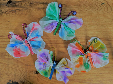 Rainy Day Butterflies