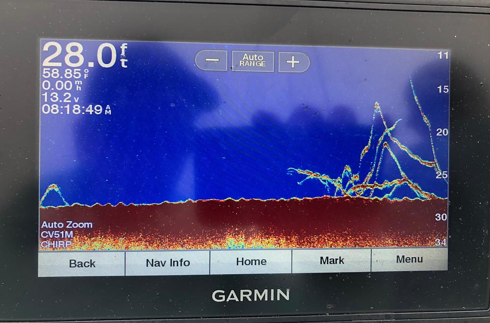 Black Sea Bass Marks in 28 feet of water